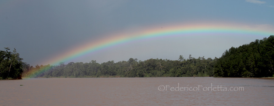 10_Rainbow over Kinabatangan copy