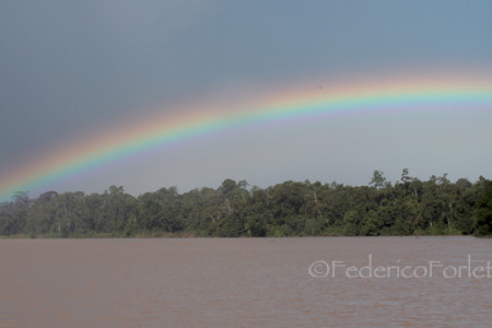 10_Rainbow over Kinabatangan copy